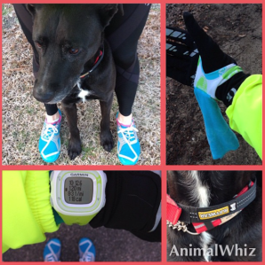 A post run photo with my running buddy, CJ, and with a Runningluv in hand!