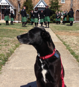 CJ selfied in front of the practicing bagpipers before the parade